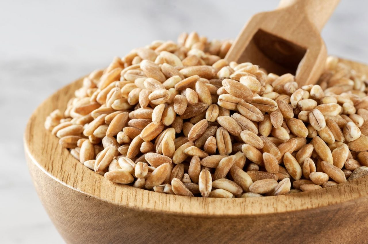 How To Cook Farro On the Stove - Simple